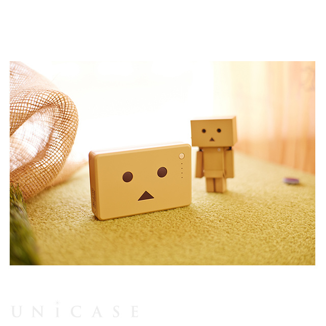 Power Plus 10050mAh DANBOARD version