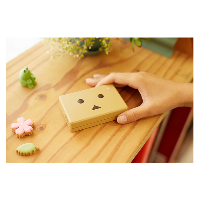 Power Plus 10050mAh DANBOARD versionサブ画像
