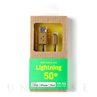 【Lightningケーブル MFi取得】DANBOARD USB Cable with Lightning connector (50cm)