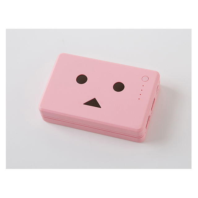 Power Plus 10050mAh DANBOARD version -FLOWERS- (さくら)サブ画像