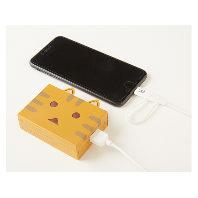 Power Plus 6000mAh nyanboard version (雉虎)サブ画像