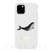 【iPhone11 Pro ケース】INTO THE WILD Jelly Hard Case (Whale)