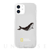 【iPhone12 mini ケース】Into the Wild Jell-hard Case (Whale)