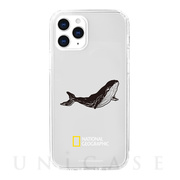 【iPhone12/12 Pro ケース】Into the Wild Jell-hard Case (Whale)