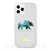【iPhone12 Pro Max ケース】Into the Wild Jell-hard Case (Bear)