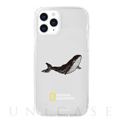 【iPhone12 Pro Max ケース】Into the Wild Jell-hard Case (Whale)